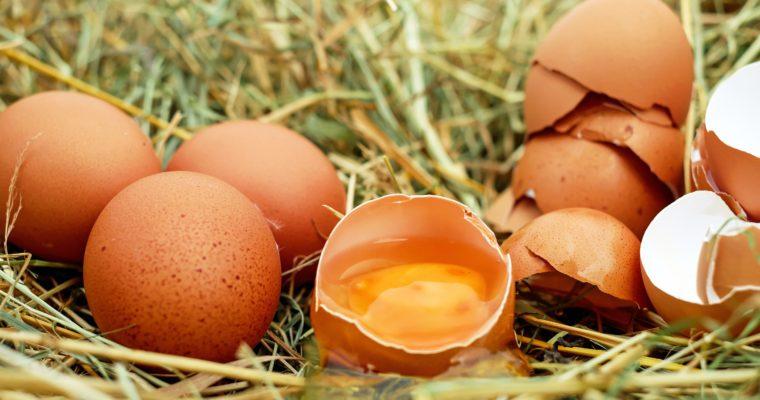 eieren in hooi met dooier